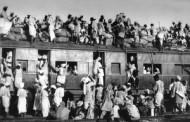 فرق عمدۀ مهاجر و پناهنده