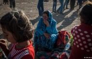 ملل متحد: شمار پناهجویان افزایش چشمگیر یافته است