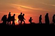 پناهنده و موضوع سرزمین مادری