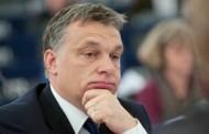 عفو بینالملل مجارستان را به بدرفتاری علیه پناهجویان متهم کرد