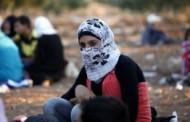 آلبوم عکس : پناهندگان سوری